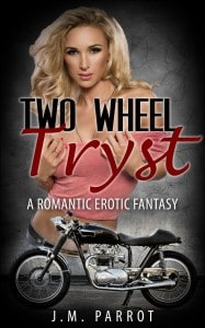 AGWDM two wheel tryst cover